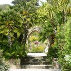 Abbay Garden on the island of Tresco, UK