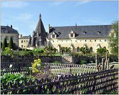 Abbaye Royale de Fontevraud IX