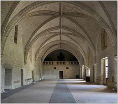 Abbaye Royale de Fontevraud V