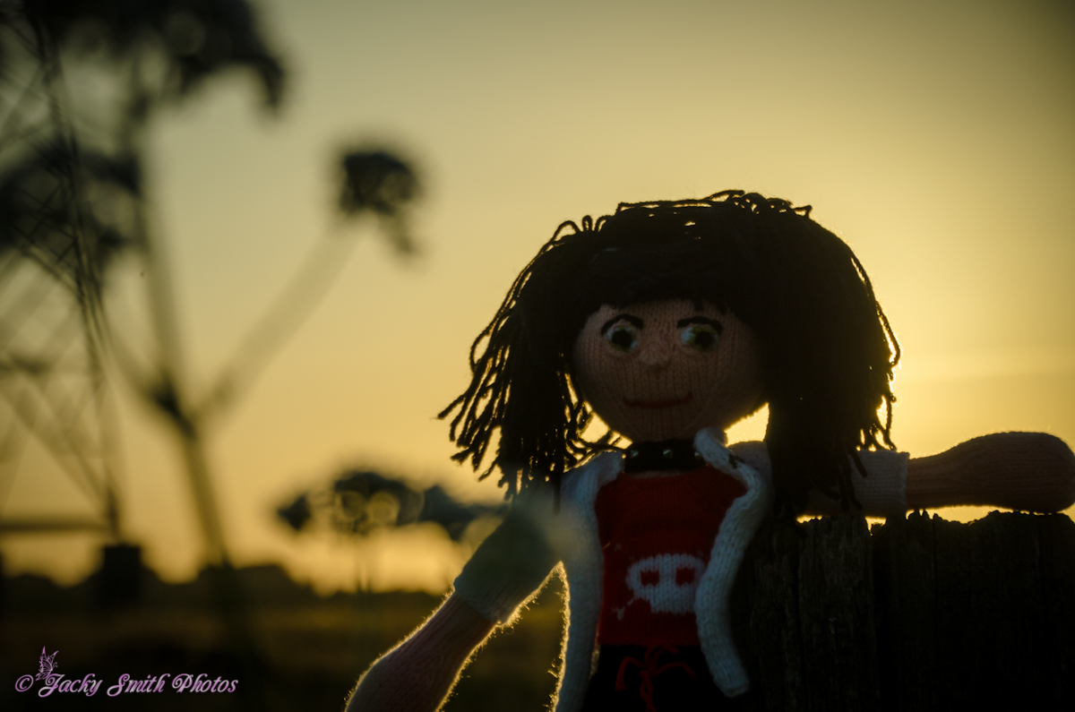 Abby genießt den Sonnenuntergang