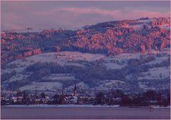 Abend am Bodensee - Steinach mit Rorschacherberg im Hintergrund