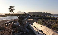 Abend am Puget Sound