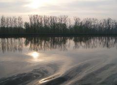 Abend am Rhein.