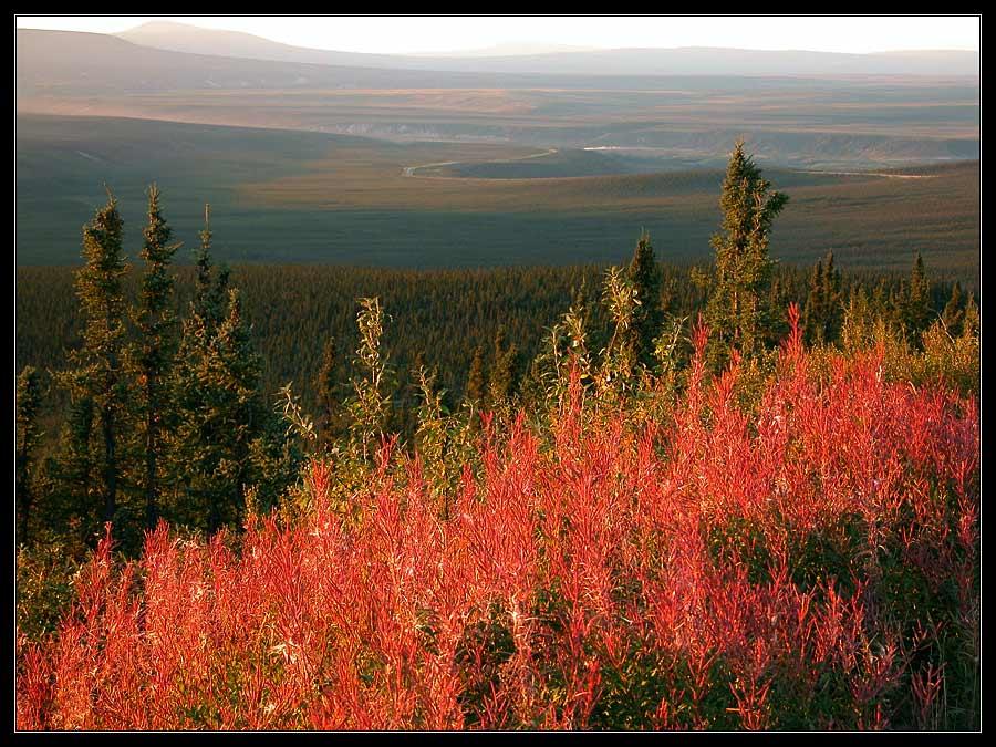 Abend im Yukon