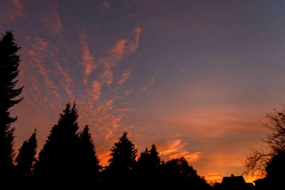 Abendhimmel SB-4170-3