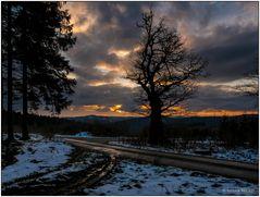 Abendhimmel über dem Burgfeld
