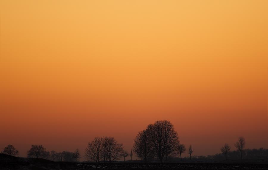 Abendhimmel über Rheinhessen