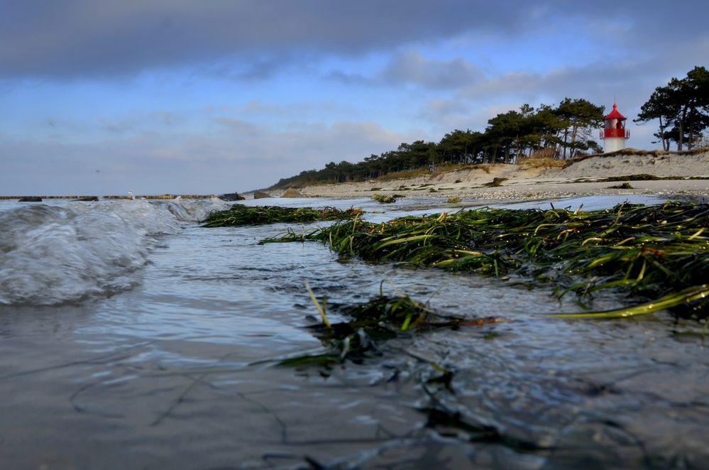 Abendlich am Strand von Hiddensee