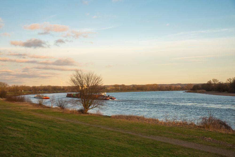 abendliche Sonne an der Elbe