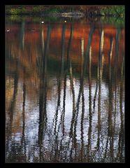 Abendliche Spiegelei am See
