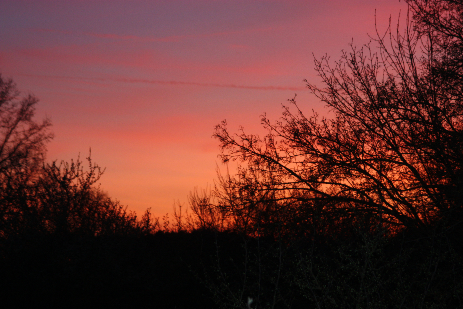 abendlicher Blick vom Balkon