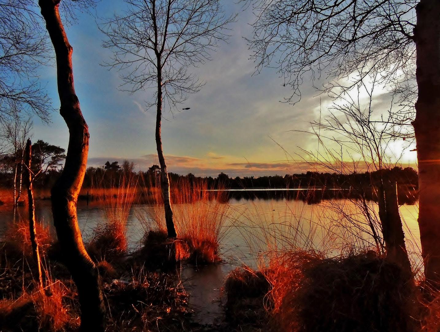Abendliches Moor-Glühen