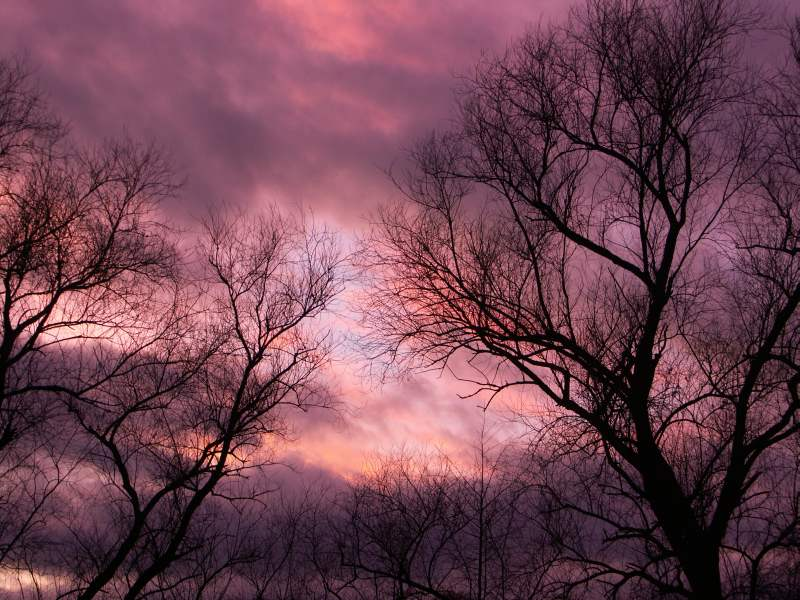 Abendrot horizontal