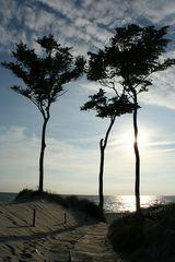 Abends am Weststrand Darßer Ort (Ostsee)