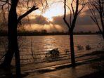 Abends an der Elbe bei Hochwasser_2