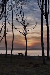 - abends an der Ostsee -