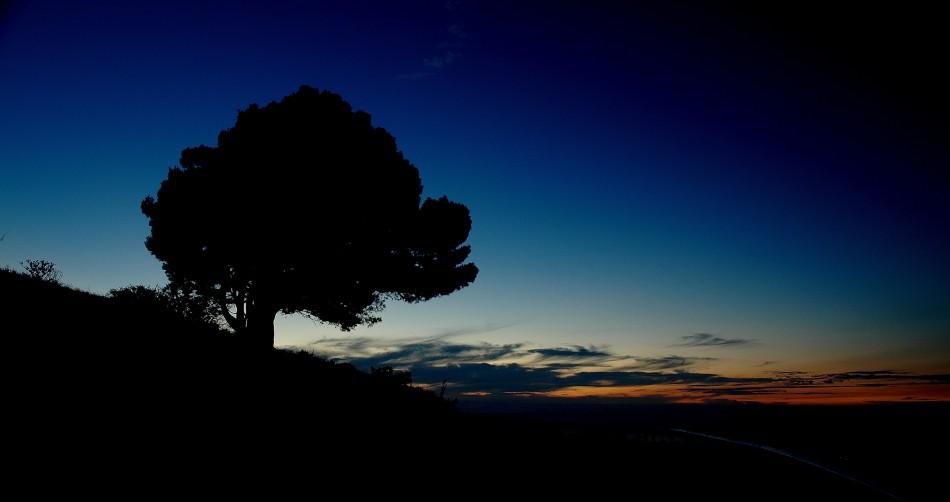 Abends auf dem Signal Hill
