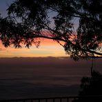 Abends auf Madeira