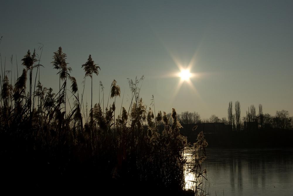 Abends im Naturschutzgebiet