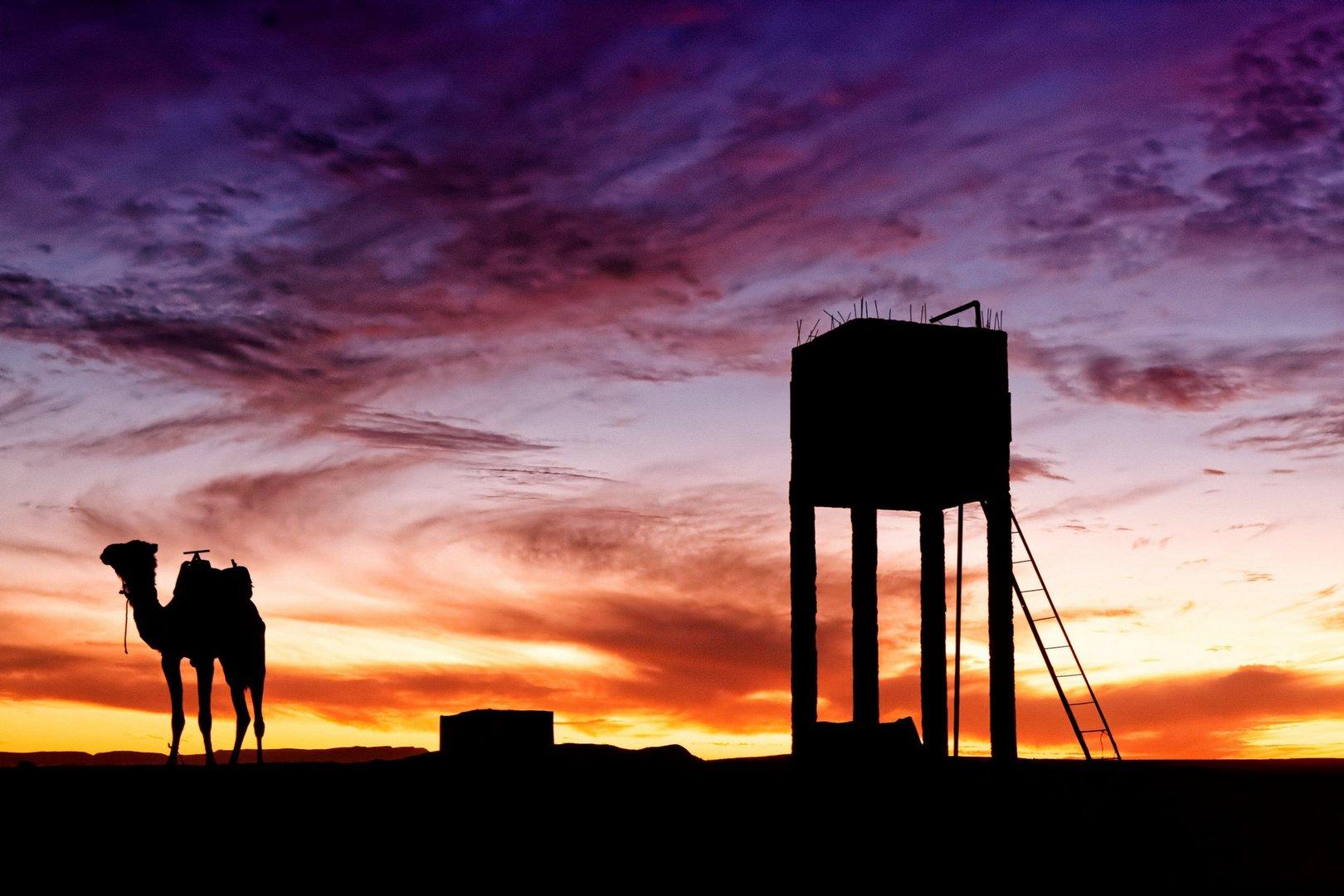 Abends im Wüstencamp