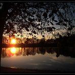 Abendsonne 2