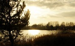 Abendsonne am Sollnitzer See
