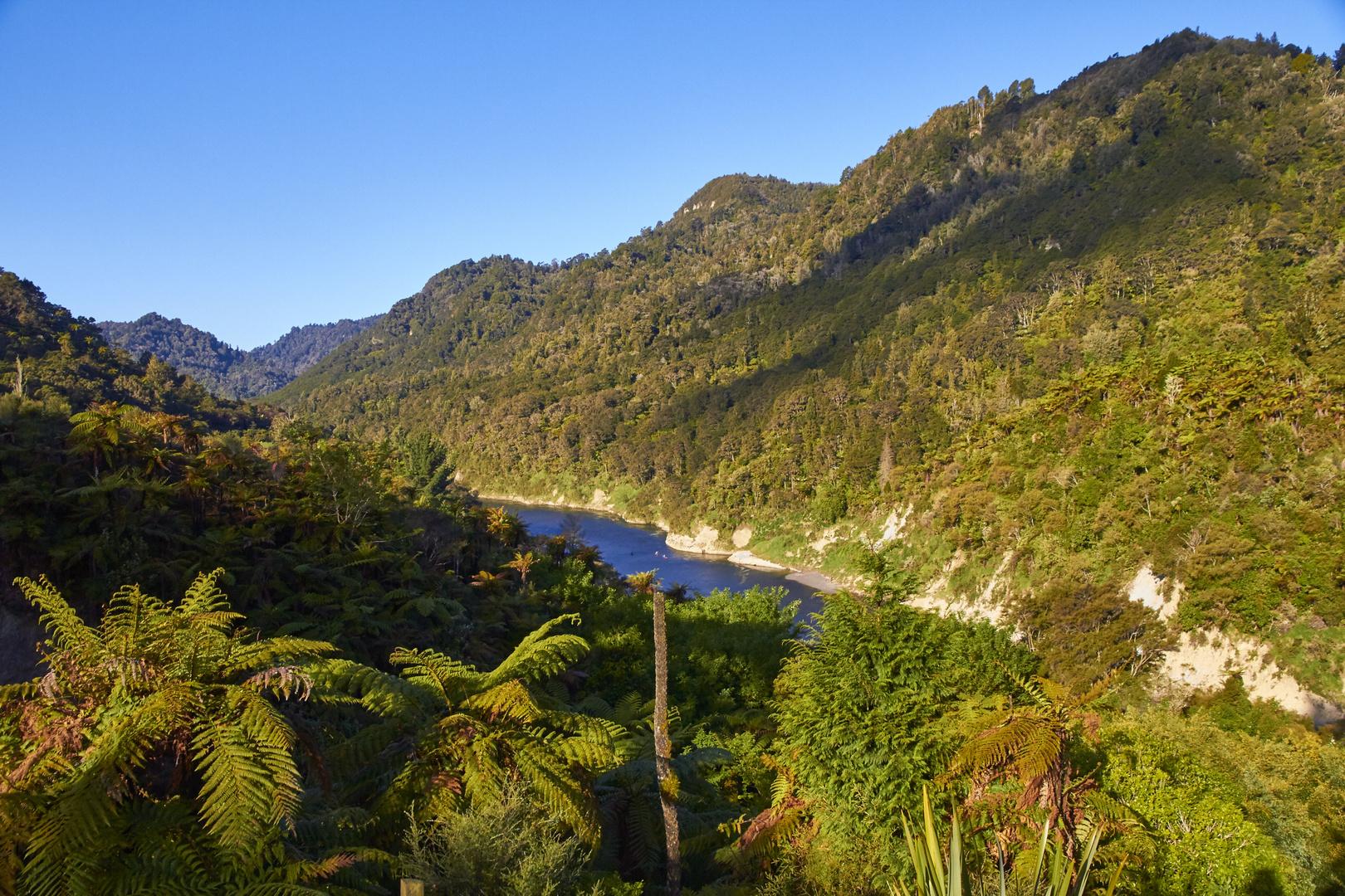 Abendsonne am Wanganui River