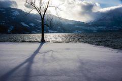 Abendsonne am winterlichen Thunersee
