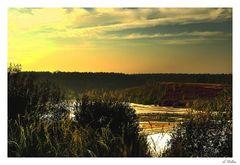 """ Abendsonne auf der Mechelse Heide ""(2)"