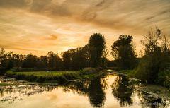 Abendsonne im Brenner Moor