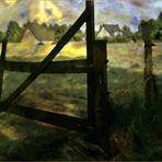 Abendsonne über dem Feld