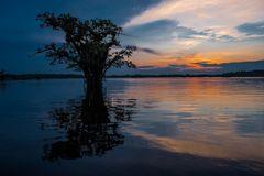 Abendstimmung am Amazonas