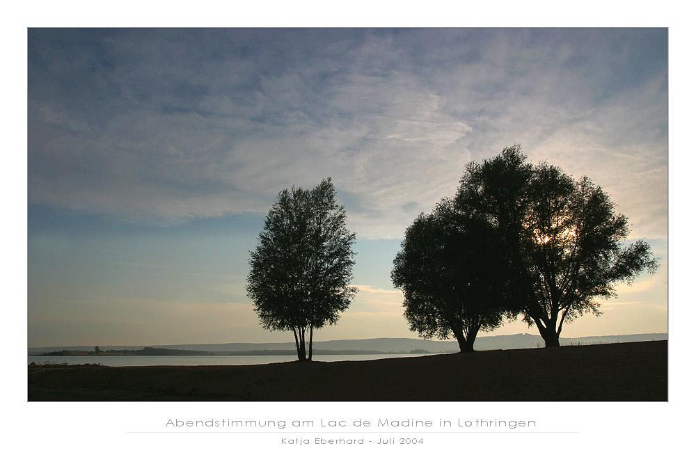 Abendstimmung am Lac de Madine