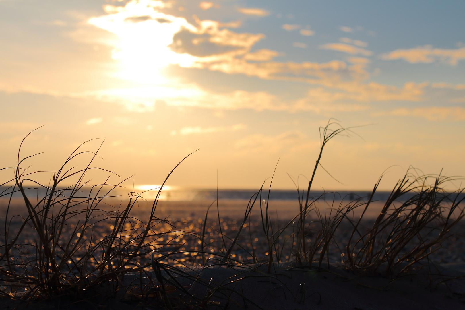 Abendstimmung am Strand von Blavand/DK