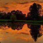 Abendstimmung am Teich 080