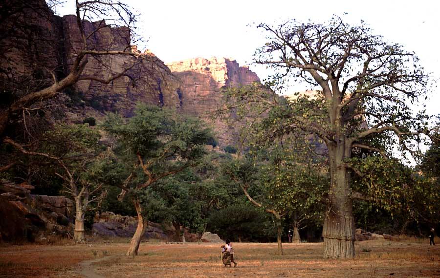 Abendstimmung an den Falaise de Bandiagarra in Mali