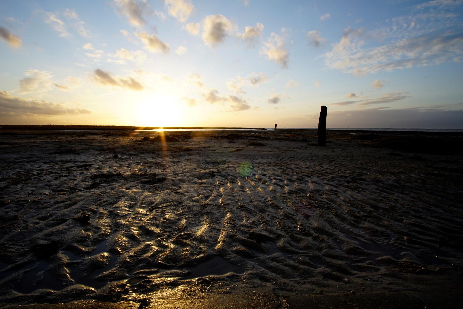 An Der Nordseeküste Download Kostenlos