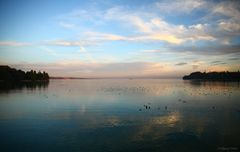 Abendstimmung auf der Insel Mainau mit Blick über den Bodensee