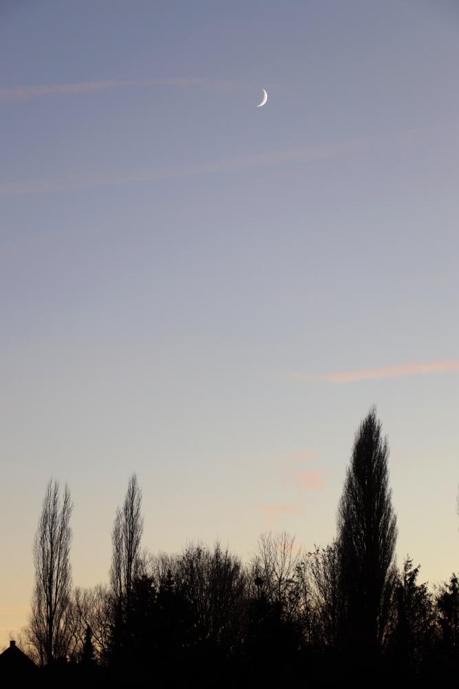 Abendstimmung mit zunehmendem Mond am 18. Dezember - Bild 3