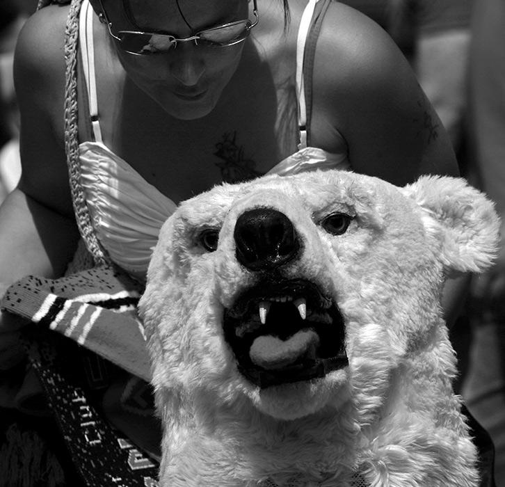 aber Eisbär ...