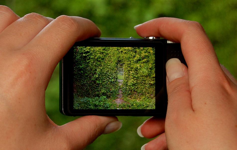 Abfotografiert