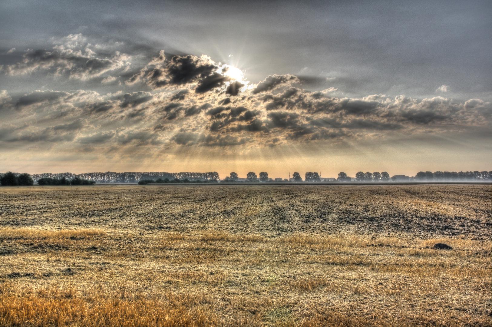 Abgeerntetes Feld bei Eggersdorf