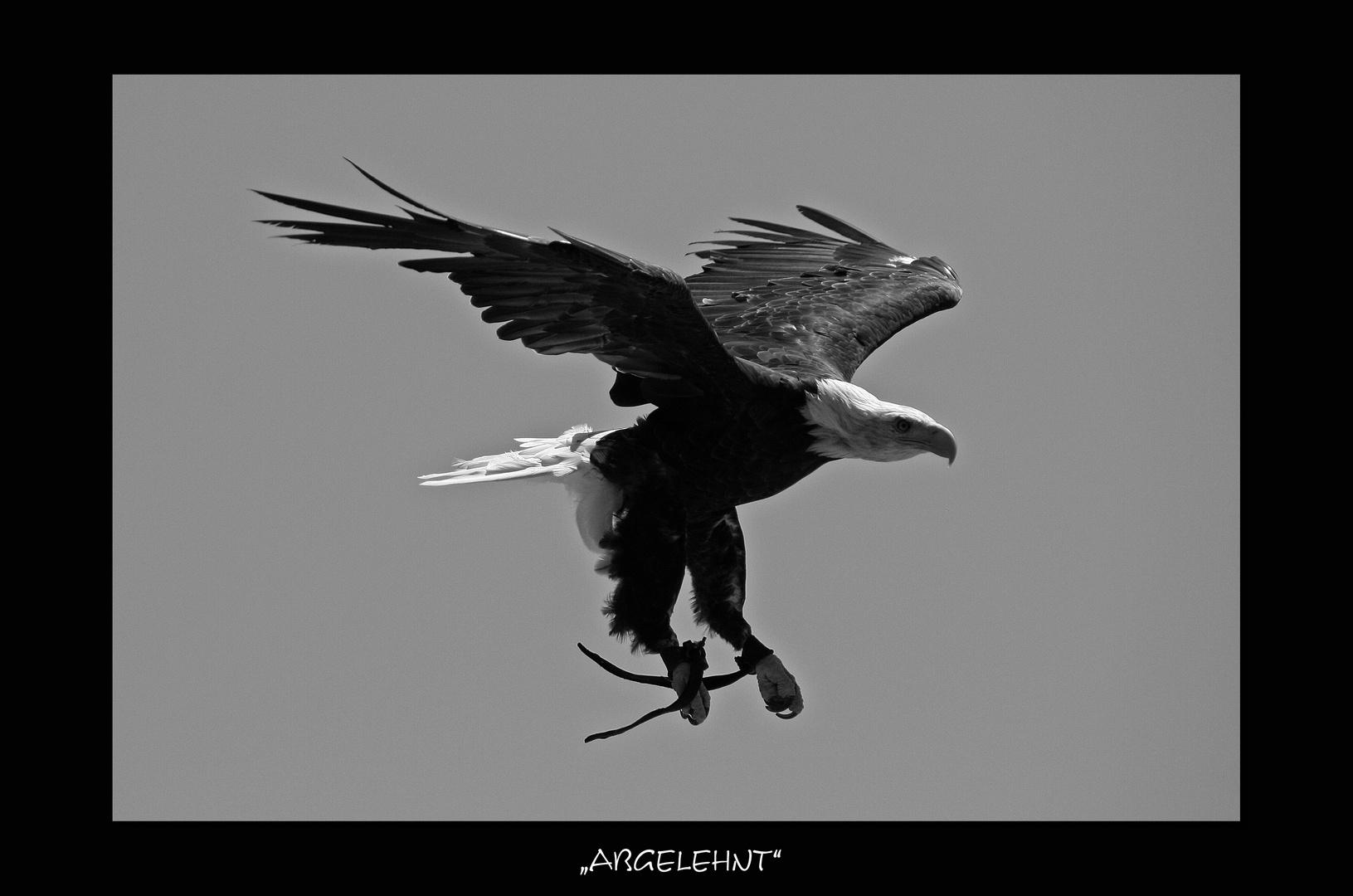 """""""ABGELEHNT"""""""