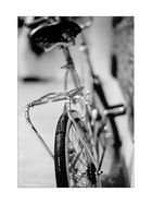 About a bike, vierter Akt