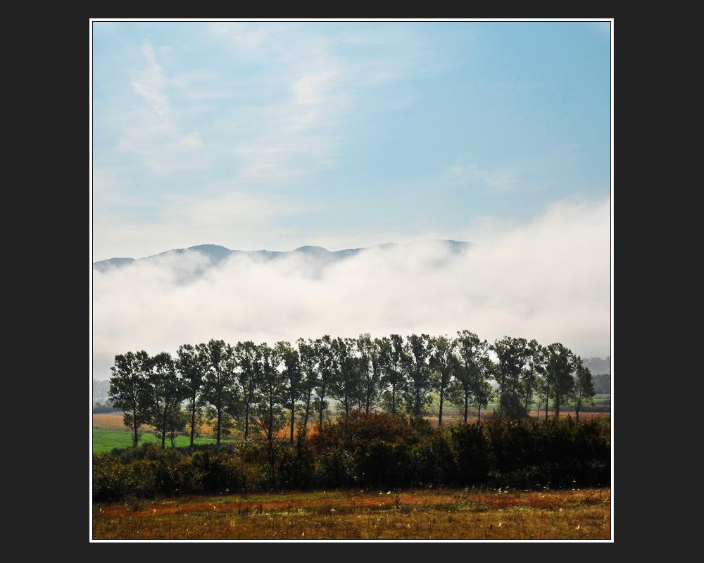 Abschied mit Nebel