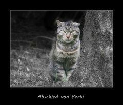 *** Abschied von Berti ***