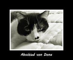 Abschied von Dona ....