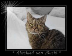 Abschied von Mucki