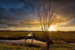 Abseits der Kinderdijk-Windmühlen