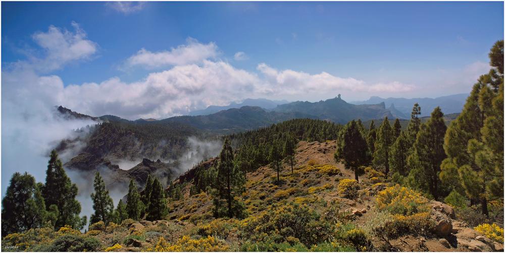 Abstieg vom Pico de las Nieves